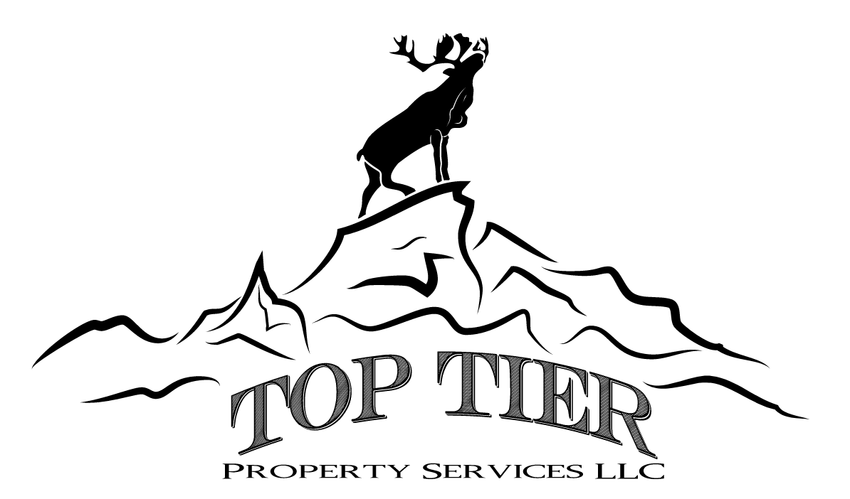 Top Tier Property Services LLC